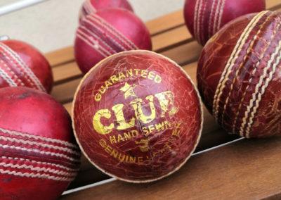 Présentation d'une vue macro avec le logo sur la balle de cricket